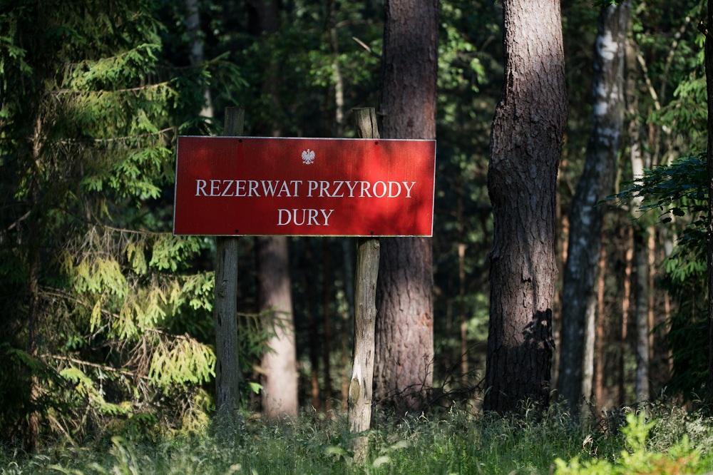 Rezerwaty i inne formy ochrony przyrody