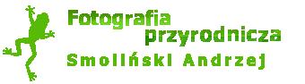 Smoliński Andrzej - Fotografia przyrodnicza